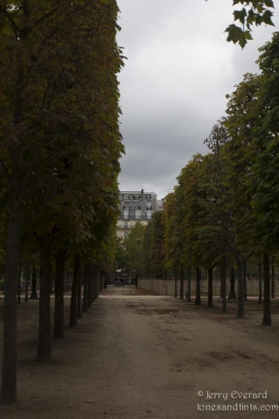 The Garden of the Tuileries