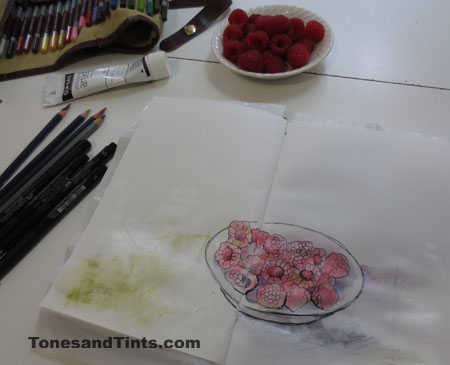 sketching rasberries