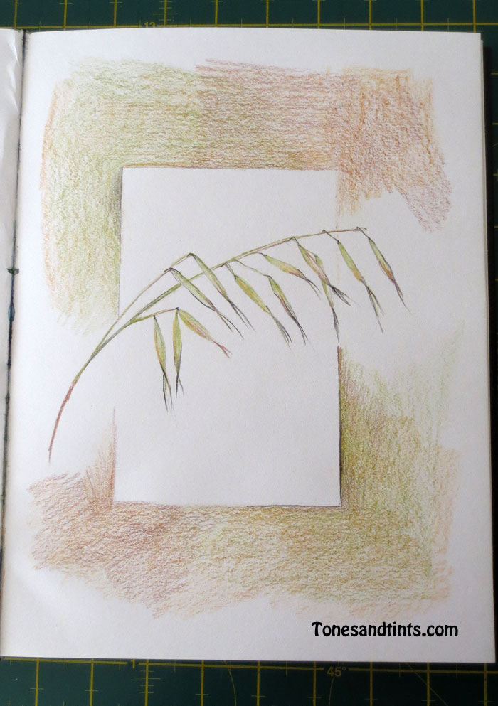 drawing of summer grass