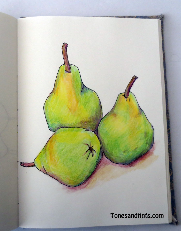 sketch of pears
