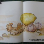 drawing of lemon, ginger and garlic